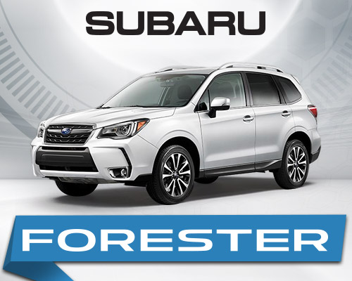 2019 Subaru Forester at Willowdale Subaru