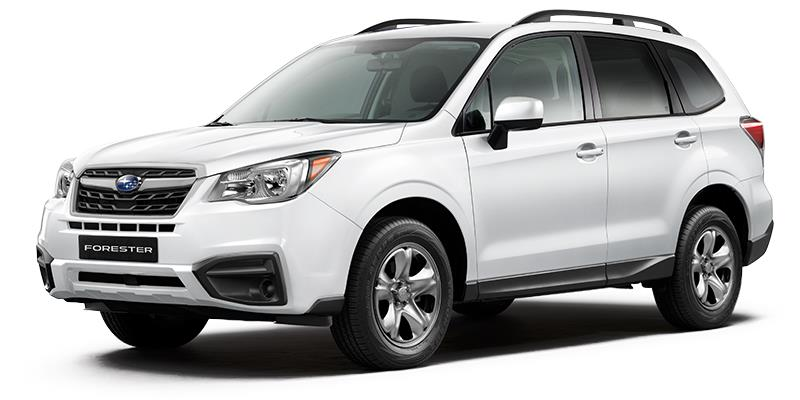 Willowdale Subaru Forester