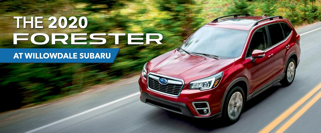 The 2020 Subaru Forester at Willowdale Subaru